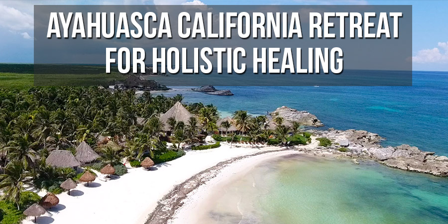 Attend Ayahuasca California Retreat for Holistic Healing